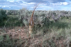 PLAND - red willow basket