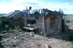 PLAND - pit hut